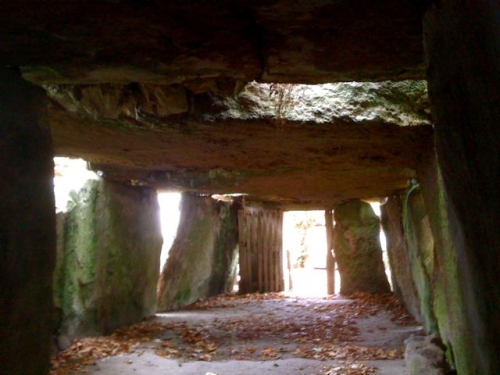 inside-dolman500.jpg